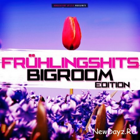Fruhlingshits: Bigroom Edition (2015)