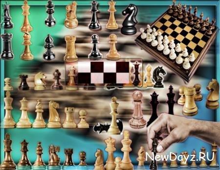 Png клипарты без фона - Шахматы и шахматные доски