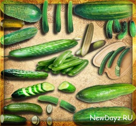 Png прозрачный фон - Зеленые огурцы