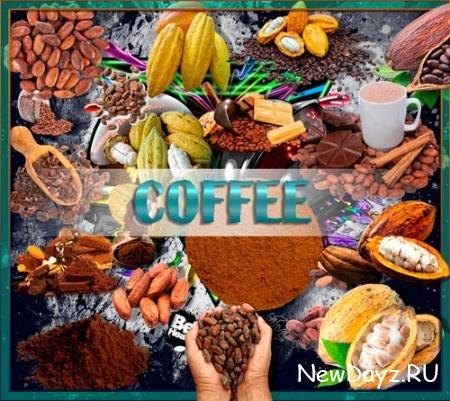 Растровые клипарты - Какао и какао бобы