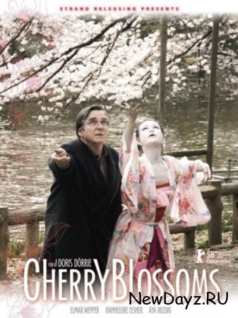 Цвет сакуры / Цветение сакуры / Kirschbluten - Hanami / Cherry Blossoms (2008) DVDRip