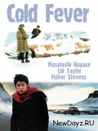 Холодная лихорадка / Холодный огонь / Á köldum klaka / Cold Fever (1995) DVDRip